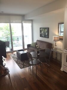 Fully Furnished condo one bedroom Ottawa Centretown January