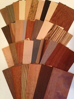 Wood Veneer variety pieces pack 20 square feet Artist craft exotic Marquetry lot