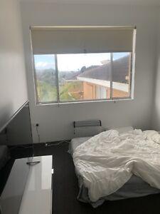 Hi room for rent kogarah