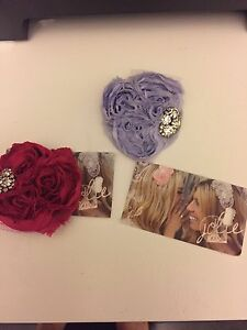 Gorgeous Jolie Hair Pieces- Brand New