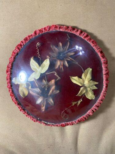 Superb Circular Antique Victorian Dried Floral Arrangement In Glass Case