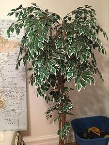 Fake tree plant real wood trunk 6ft