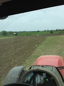 Wanted: Crop, Hay and Pasture Land Cambridge Kitchener Area image 4