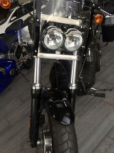 "2009 Harley-Davidson  FXDL ""Anniversary Edition"
