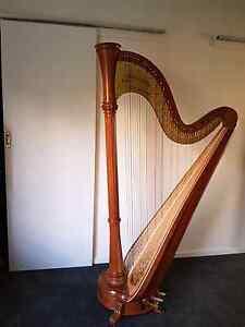 Aoyama Vega harp Bellevue Heights Mitcham Area Preview