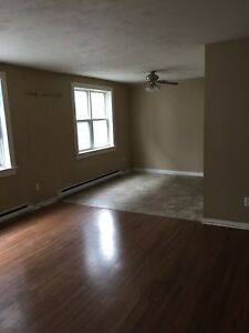 3 bedroom Main Floor Apt. Centre City