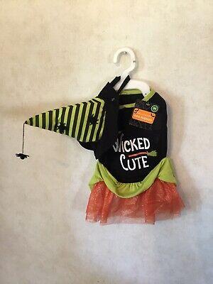 NWT Medium Dog Halloween Witch Costume 'Wicked Cute' Spider Hat Orange Tutu Cute](Spider Dog Halloween)