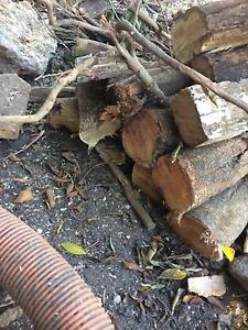 Free wood fire logs Beecroft Hornsby Area Preview