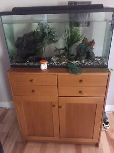 30 gallon fish tank/stand and accessories