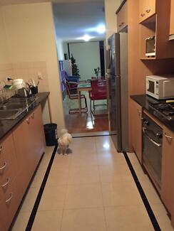 walk to Ashfield station-Master room with parking-short term Ashfield Ashfield Area Preview