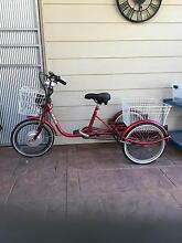 Electric tricycle Somerville Mornington Peninsula Preview
