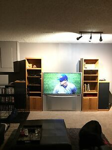 Entertainment unit + tv - will sell separate