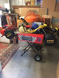 Go kart  tony kart kt100s engine Wollongong Wollongong Area Preview