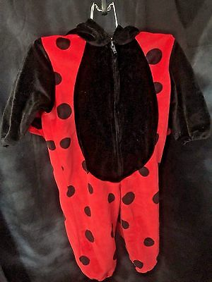 Lady Bug 12 Month Halloween Costume Warm Cute Trick Or Treat Children's Holidays](Cute Kid Halloween Treats)