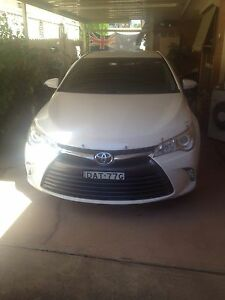 Toyota Camry altise Warnervale Wyong Area Preview