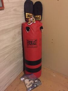 Complete Punching bag/boxing set for sale.