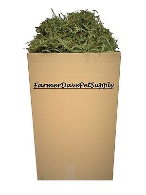 FarmerDavePetSupply 35 lb BEST-OF-THE-BEST 2nd Cut Timothy Hay for