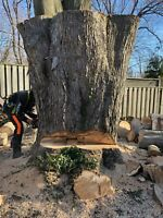 Tree removal , Tree maintenance,