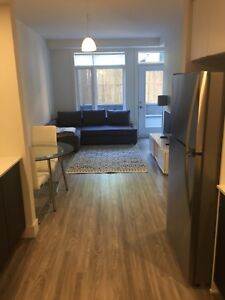 Glebe/Old Ottawa South 2 Bedroom Brand New Rental.