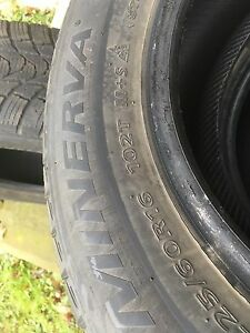 Eco Stud Minerva Winter Tires