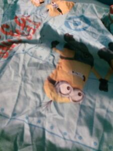 Minion twin fitted bed sheet $5