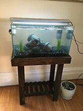 Fish tank with all accessories! Unley Unley Area Preview
