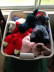 Beanie Baby and Beanie Buddy Collection  Stratford Kitchener Area image 1