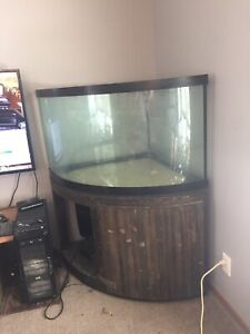 130 gallons corner aquarium and stand for sale (SOLD)