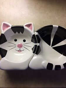 Cat food and water dish