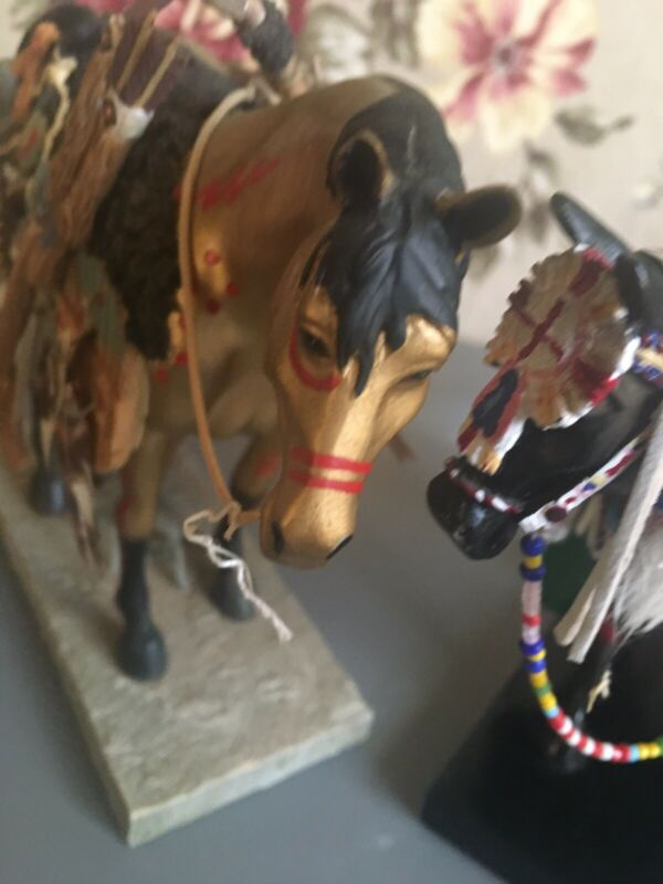 trail of painted ponies Ceremonial Pony and Medicine horse
