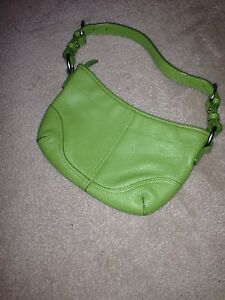 Daniel leather green purse