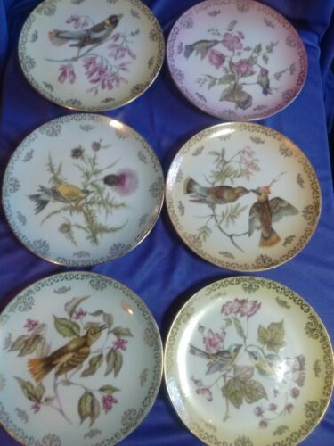 "Set of 6 MITTERTEICH BAVARIA Germany, 7.5"" Beautiful Bird Plates w/ Gold Gilt"