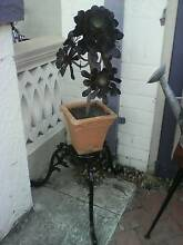 plant with stand available Wembley Cambridge Area Preview