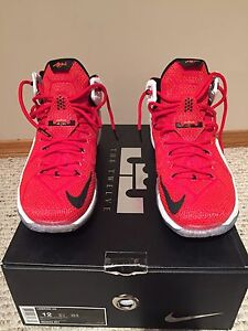 Lebron 12 (heart of the lion)