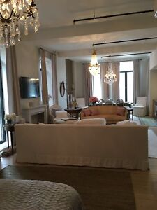 Fabulous condo in griffintown
