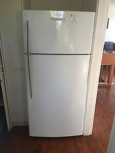 Fisher and paykel fridge Newport Pittwater Area Preview