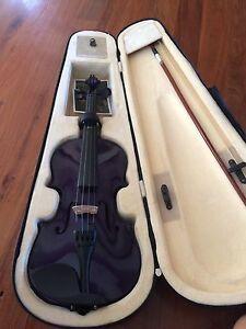 Purple violin Canungra Ipswich South Preview
