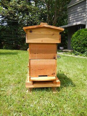 Topbar Honey Bee Hive Cedar Rectangle Aoka Farm Usa Sourced Untreated Wood