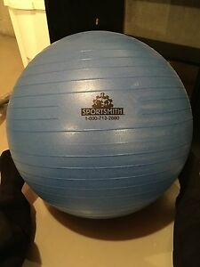 Exercise ball (55cm?)