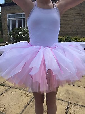 Ballet Tutu Ballerina Homemade Pink White Fairy Costume Princess Dance  (Homemade Dance Costumes)