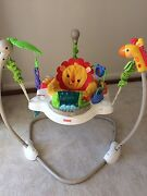 Rainforest jumperoo Hornsby Hornsby Area Preview