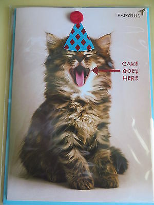 Papyrus Happy Birthday Card  Indulge Enjoy Repeat  Happy Birthday  Cat