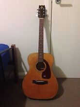 Takeharu Acoustic Guitar Smeaton Grange Camden Area Preview