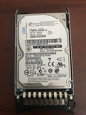 Ibm Sas-festplatte (IBM System x3400 M3 IBM SAS Festplatte 300GB 10k SAS 6G SFF 43D0637 42D0638)