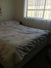 Room for rent Albany Creek Brisbane North East Preview