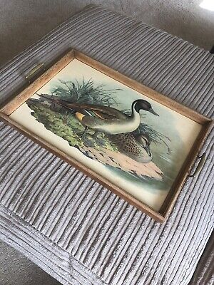Vintage Antique Dinner / Serving Tray With Ducks