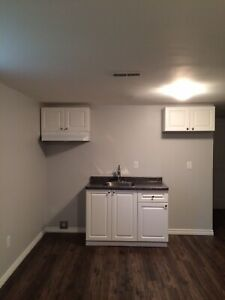 Brand New One Bedroom  Apartment in Basement