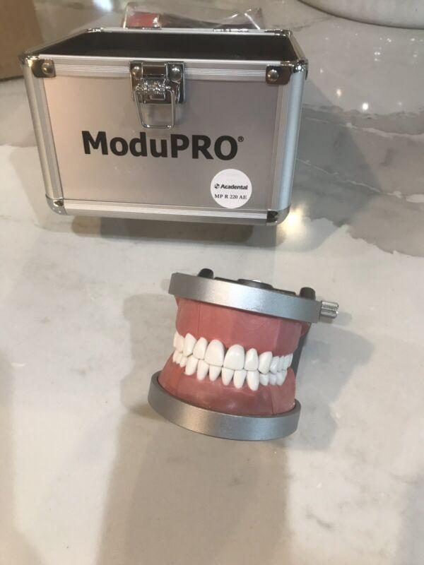 Acadental ModuPRO Typodont - CRDTS/NERB/WREB Exam Kit MP R 220 AE