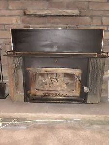 Fireplace insert — moving sale