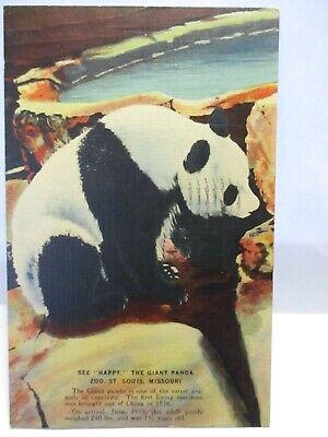 1940s POSTCARD GIANT PANDA